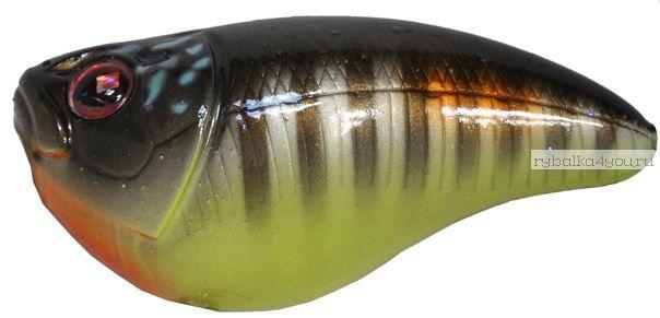 Воблер Sebile плавающий CRANKSTER SR 65мм / 20гр /  до 0.2m цвет NTY