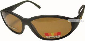 Очки Поляризационные Salmo 2504